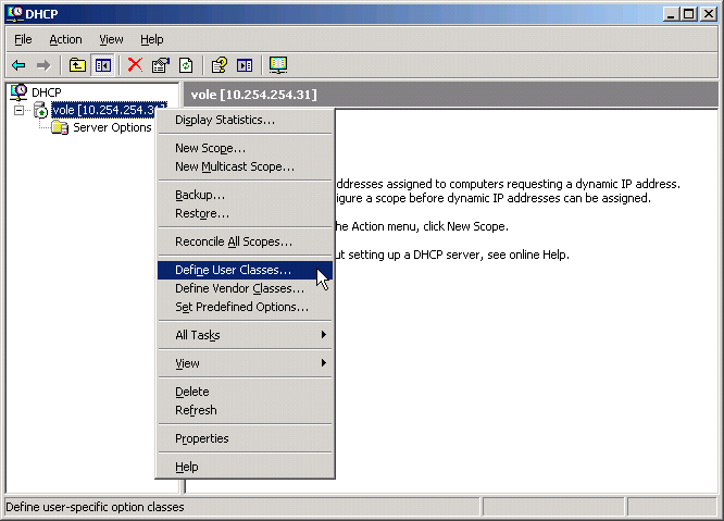 Defining a DHCP User Class in Windows